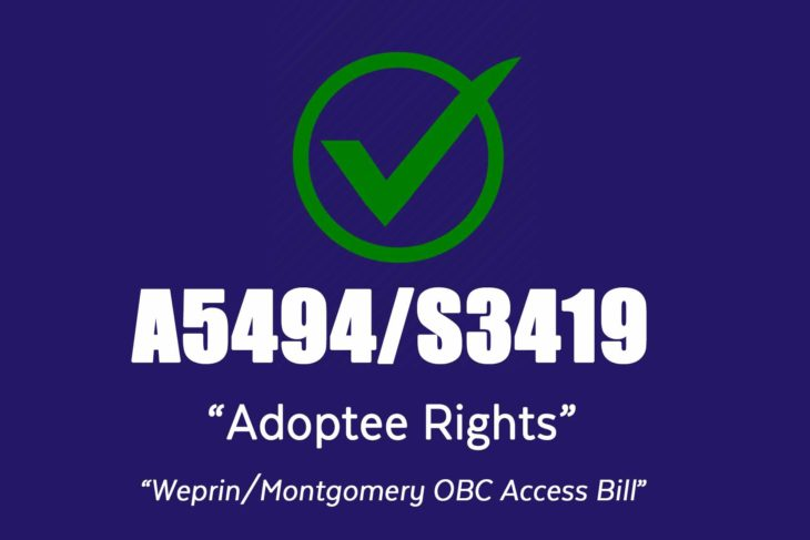 Weprin/Montgomery Bill A5494/S3419