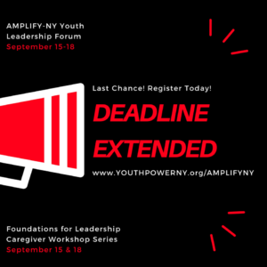 YOUTH POWER! aims to AMPLIFY-NY with regional youth leadership forums and supported leadership activities for young people with disabilities to speak up, build skills, and prepare to take on leadership roles.