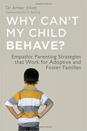Why Can't My Child Behave?: Empathic Parenting Strategies that Work for Adoptive and Foster Families